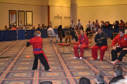 10th DARE Martial Arts Tournament Salt City Karate Team 2015 (86)