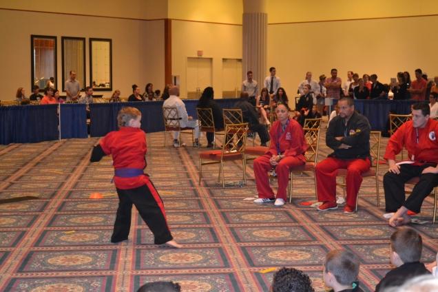 10th DARE Martial Arts Tournament Salt City Karate Team 2015 (86)